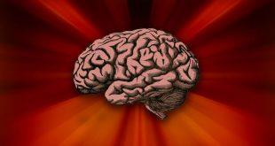 mindful Mediation