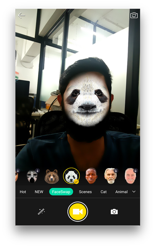 Face App - best face swap app swapping faces with popular animals like panda, bear, and Donald Trump.