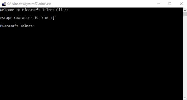 telnet_client_cmd