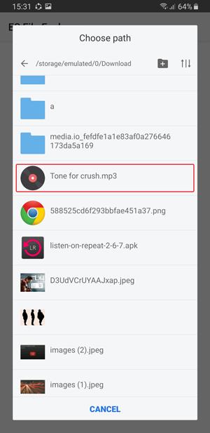 whatsapp custom notification- tone for crush