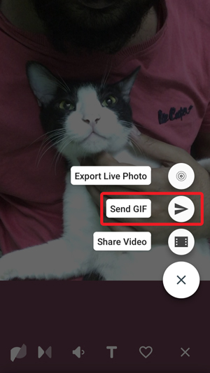 Turn Live Photos to GIF- send gif