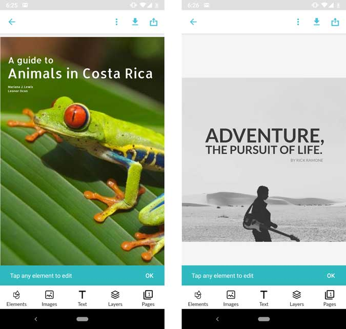 A guide to Animals in Costa rica image, Adventure The pursuit of life