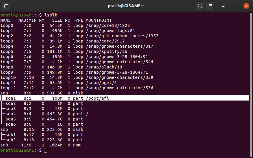 lsblk-command-displaying-windows-efi-file-location