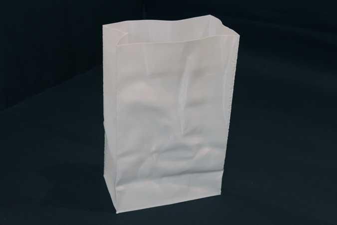 Paper Bag 3d print