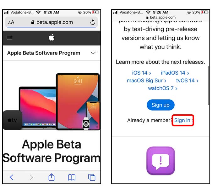 sign in to the website with your apple id